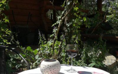 Domowy catering – marzenia się spełniają