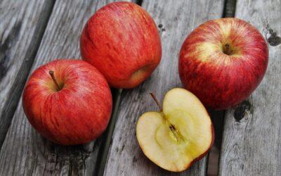 Kremowe lody z dzikich odmian jabłek i melisy